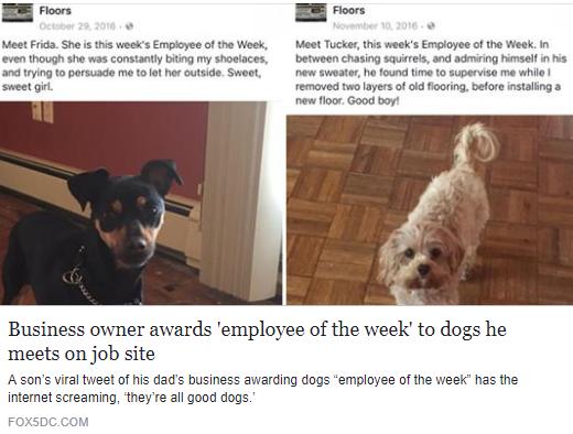 Fox 5 Employee of the Week